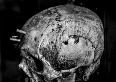 Borgin & Burkes skull