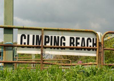Flatcoat_Climping_066